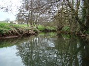River Chew - Chewton Meadow - click to enlarge